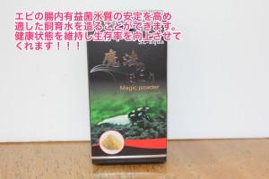 IMG_6599