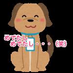 pet_nafuda_inu