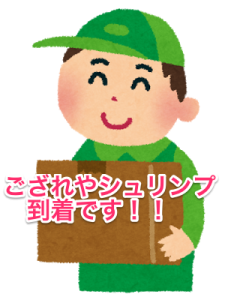 yuubin_takuhaiin_man