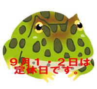 fish_berutsunogaeru