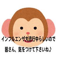 animalface_saru