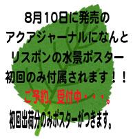 vegetable_egoma