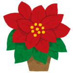 flower_poinsettia